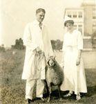 Eastern Maine General Hospital Sheep