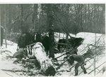 Lumbering, Moving a Log