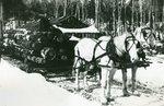 Grindstone, Maine, Logging Operation