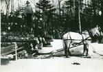 Grindstone, Maine, Jordan Lumber Company Operation
