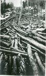 Log Sluice at Bald Mountain