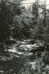Franklin, Maine, Kilkenny Stream