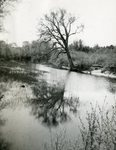Windsor, Maine, Sheepscot River