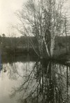 Belfast, Maine, Goose River