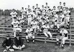 Baseball 1972