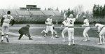 Baseball 1975