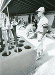 Baseball 1976