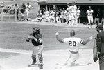 Baseball 1978