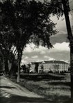 University of Maine Prism: 1953